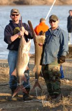 Spoonbill fishing miami oklahoma convention and visitors for Oklahoma non resident fishing license