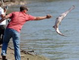 Miami Oklahoma Fishing Destination Spoonbill Research and Processing Center