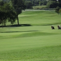 Buffalo Run Casino Classic Golf Tournament starts this week in Miami, Oklahoma